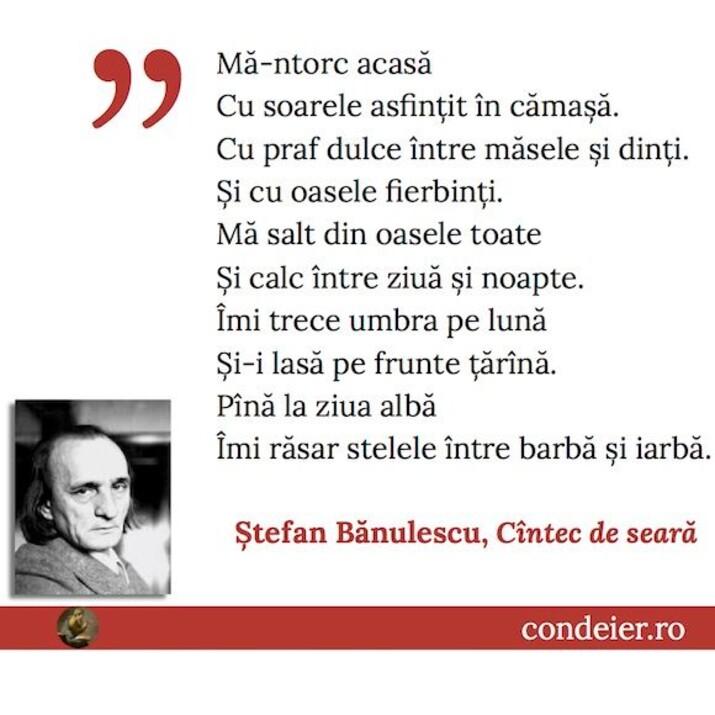 Stefan Bănulescu citat