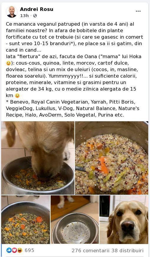 Povestea tîmpită a unui hipster despre cum să ai un cîine vegetarian